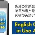 怒濤の問題数と音声データと英英辞書と録音機能付の究極英語アプリ!English Grammar in Use Activities