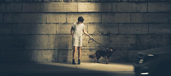 動物を飼うことは自分の心を分けること『生物からみた世界』