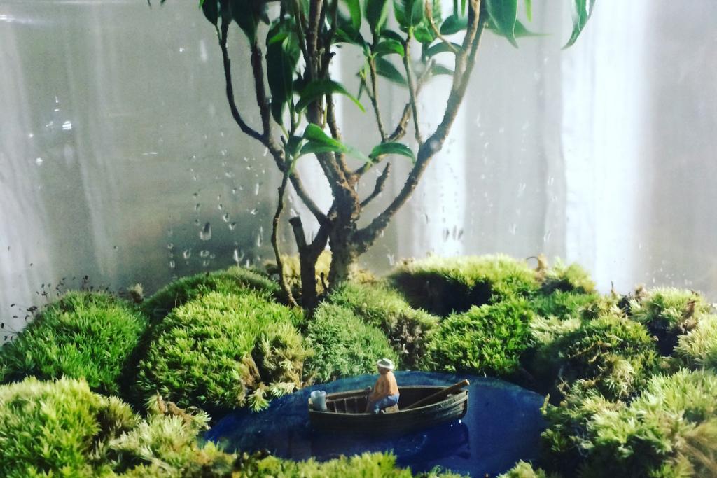 池のあるテラリウムの作り方。テーマは早期退職(願望)