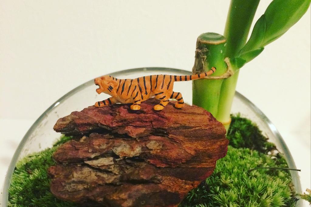 中島敦の山月記 夢破れた孤高の虎
