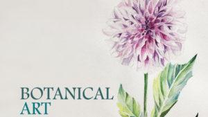 ボタニカルアート入門 植物画の描き方と画材